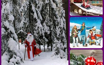 Новый год на базе Петровское с Вокруг Света!