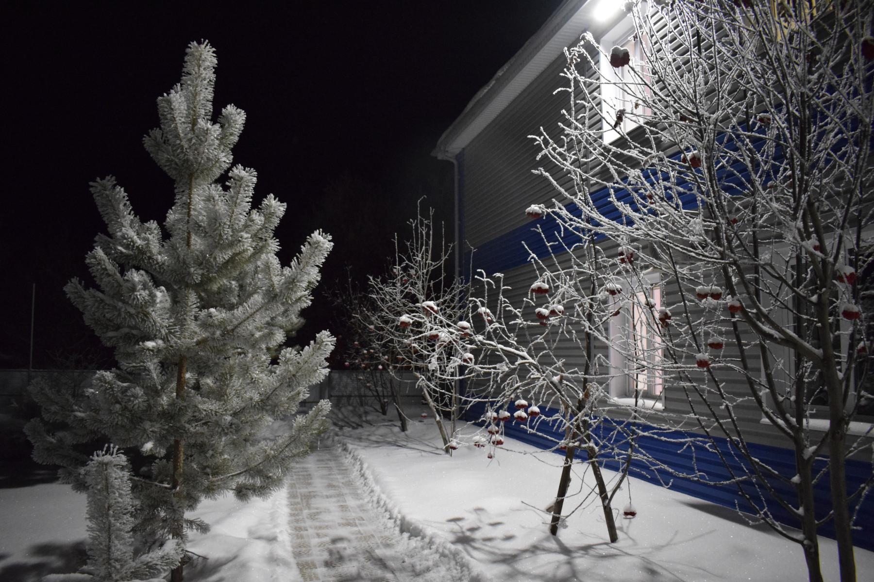 Новогодняя ночь на Базе Петровское